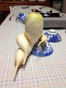 فواكه وخضروات غريبة