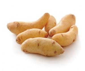 البطاطا الطولانية Fingerling